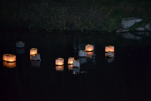 floating-candle-9-26-13-2